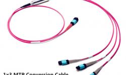 Kết nối module quang 40G và 100G với cáp chuyển đổi MTP Harness Conversion Cable
